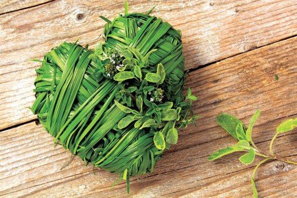 Лечебные травы от давления и гипертонии для взрослых
