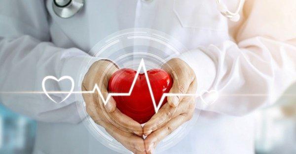 Здоровье сердце в ваших руках
